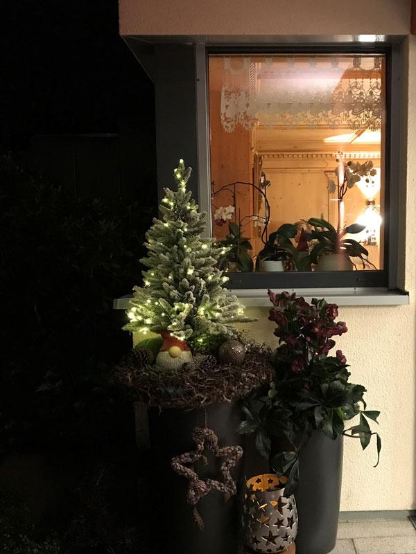 Weihnachtsbaum vor Praxis Dr. Lebmeier
