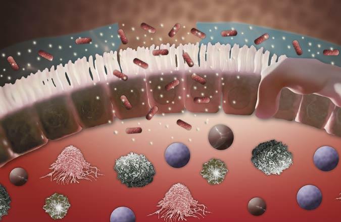 Mikrobiologische Therapie